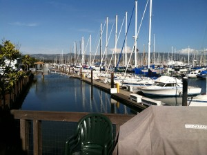 A view from the back deck at Alameda Yacht Club
